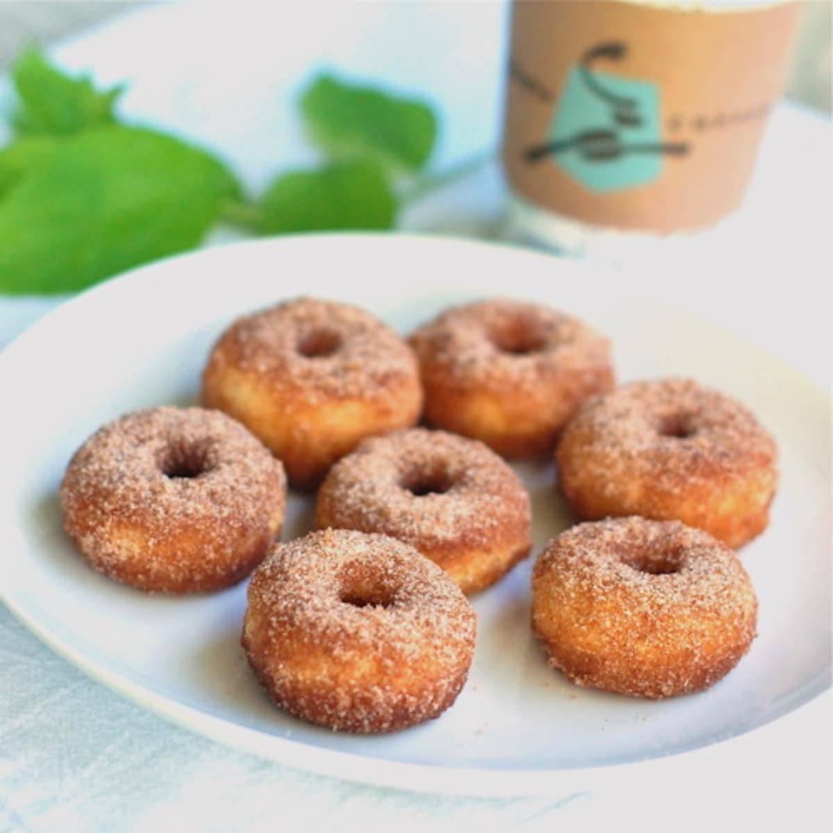 Cinnamon sugar mini donuts on a plate.
