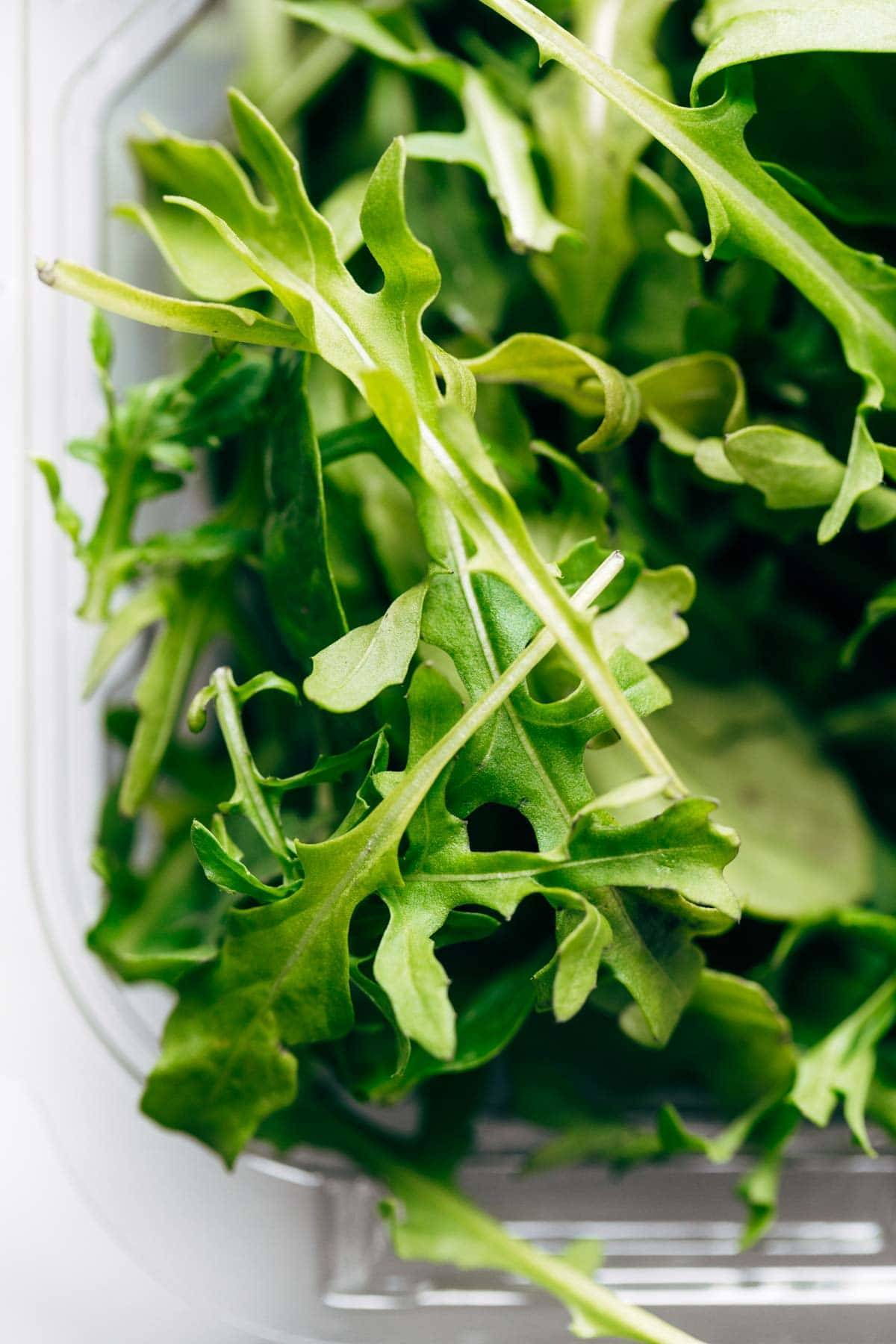 Arugula close up.
