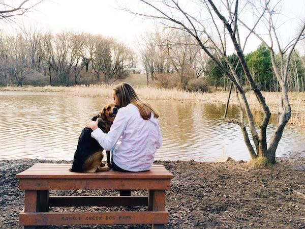 Sage at dog park