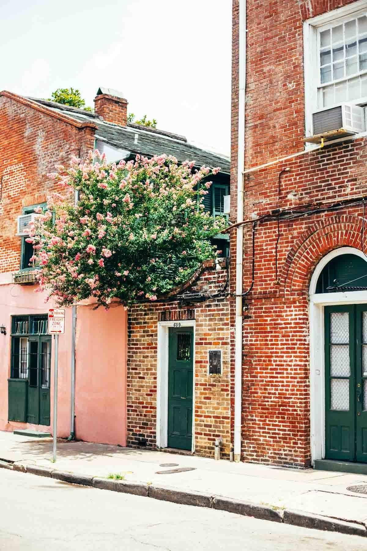 New Orleans | pinchofyum.com