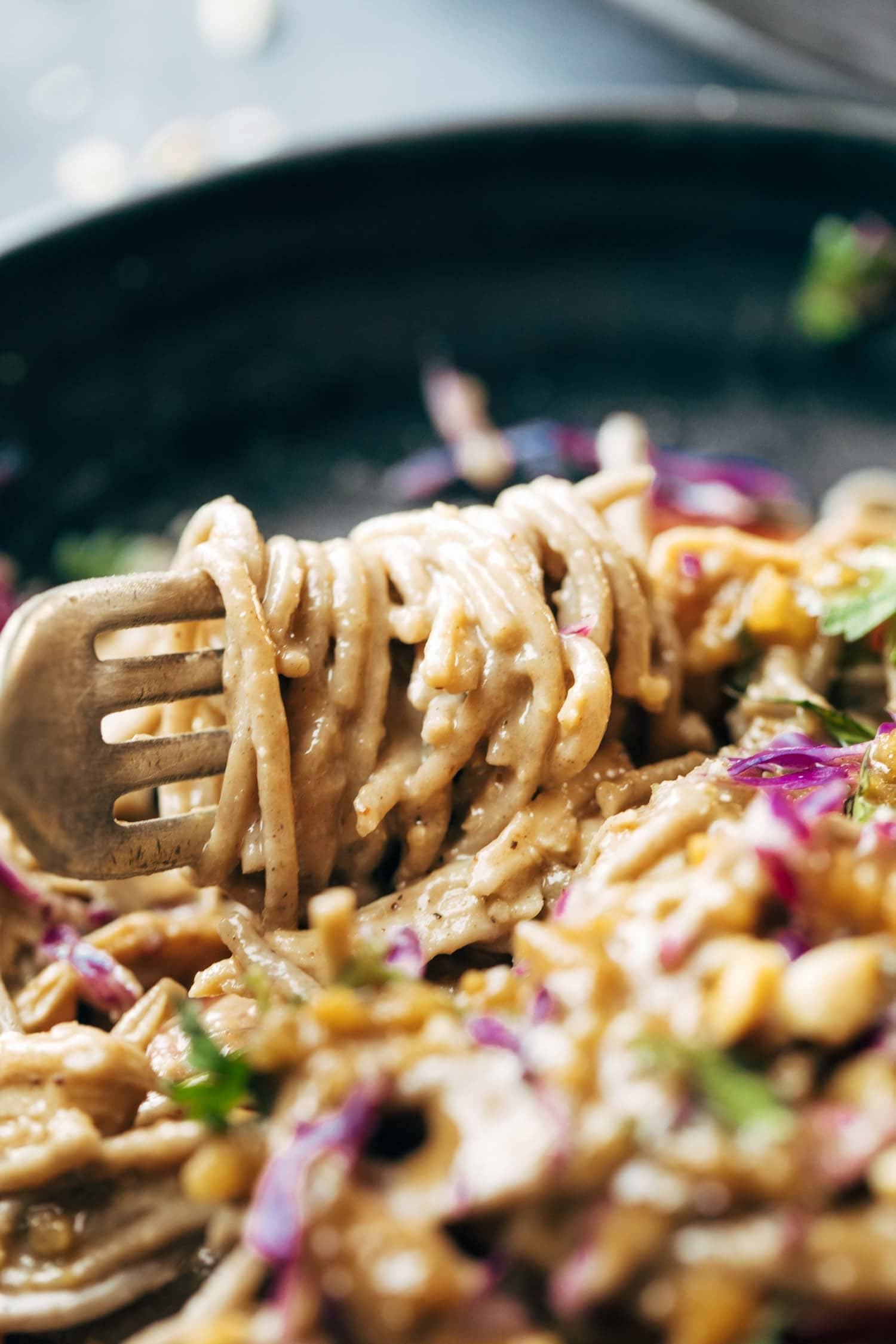 Spicy Peanut Soba Noodle Salad wrapped around a fork.
