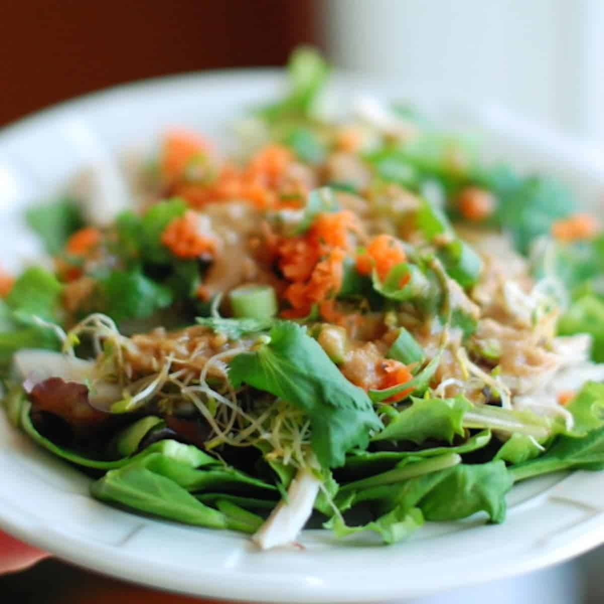 Thai chicken salad recipe pinch of yum thai chicken salad forumfinder Images