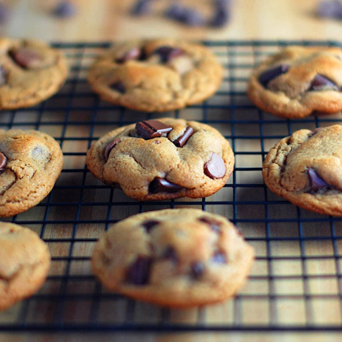 Malted Double Chocolate Chip Cookies Recipe - Pinch of Yum